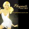 Playmate Escort Düsseldorf Logo