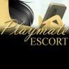 Playmate ESCORT Köln Logo